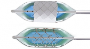 B. Braun Interventional Systems Launches Expanded CP Stent Portfolio