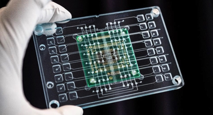 Imec Presents Novel Organ-on-Chip Platform for Drug Screening