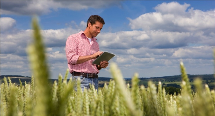 Sumitomo Chemical, BASF 'Take Major Step' in Global Development of Novel Fungicide