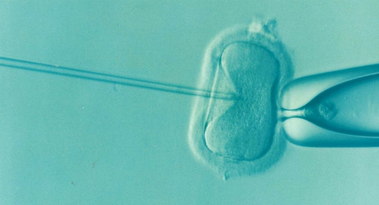 GE Healthcare and Vitrolife Partner to Improve Assisted Reproductive Technology Offerings