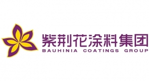 58. Bauhinia Coatings Group