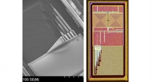 Tiny Electronic Chip Could Help Boost Neurological Disorder Treatment