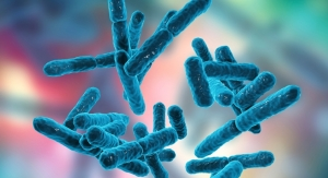 Study Finds Shortcomings in Reported Safety Data for Probiotics