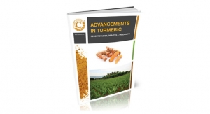 Advancements in Turmeric: Recent Studies, Debates & Takeaways