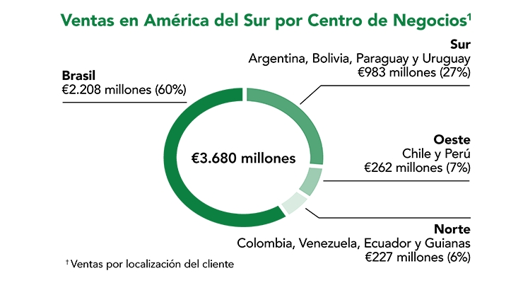 BASF South America Sales by Geographic Business Unit | source BASF