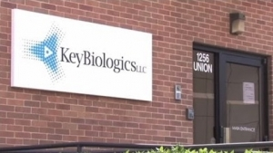 Key Biologics, BCA Partner for Cell Therapy
