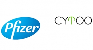 Pfizer, CYTOO in Research and Option Agreement