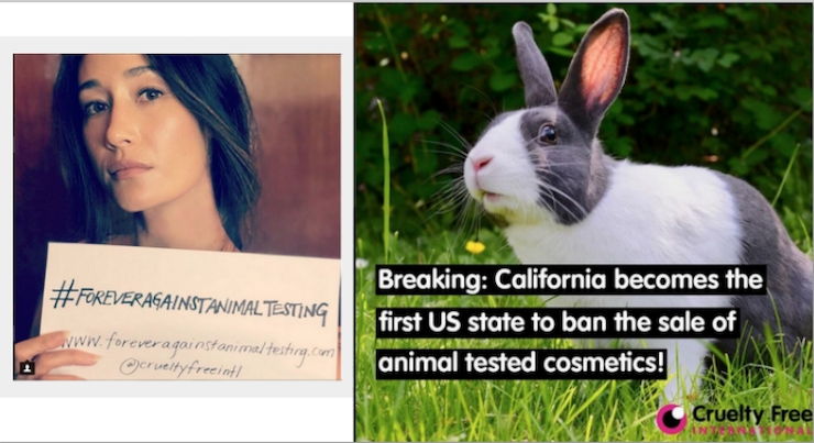 California Bans the Sale of Animal-Tested Cosmetics