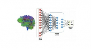 Whole-Brain Connectome Maps Teach AI to Predict Epilepsy Outcomes