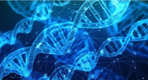 DNA of a Successful and Innovative Product Development Program