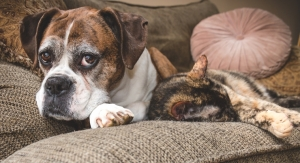 Aging Cats & Dogs Drive Market for Functional Pet Foods