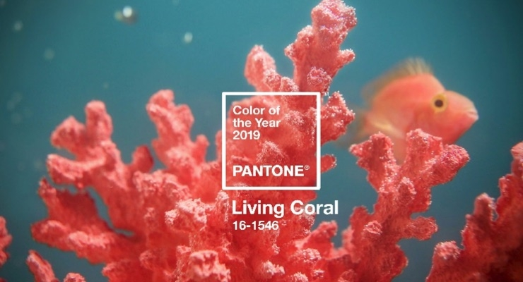 Pantone Names Color of 2019