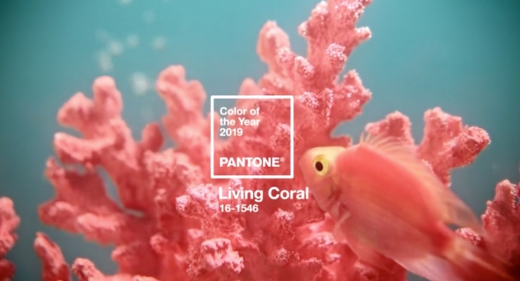 Pantone's Color of the Year 2019 is Living Coral