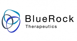 BlueRock, McEwen Stem Cell Institute Expand Alliance