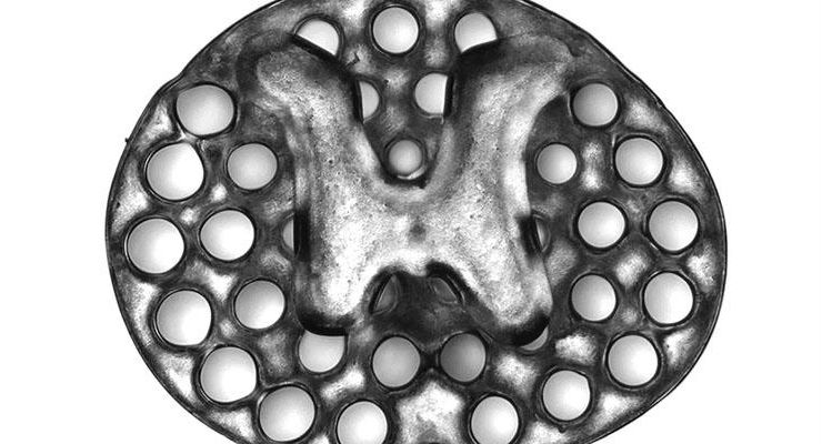 A 3D printed, two-millimeter implant (slightly larger than the thickness of a penny) used as scaffolding to repair spinal cord injuries in rats. The dots surrounding the H-shaped core are hollow portals through which implanted neural stem cells can extend axons into host tissues. Image courtesy of Jacob Koffler and Wei Zhu, UC San Diego.
