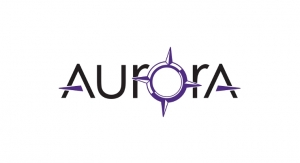 Aurora Spine Gains U.S. Patent for Minimally Invasive Spinal Implants