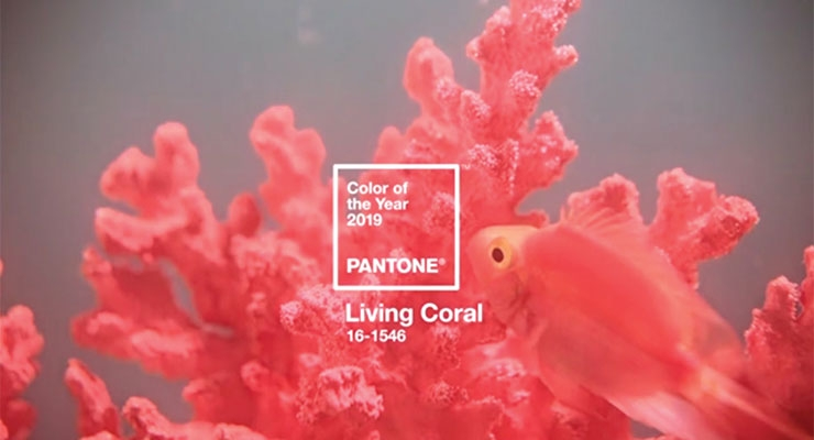 'Living Coral' Is Announced as Pantone Color of the Year