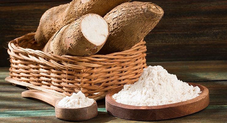 Biofortified Cassava High in Iron & Zinc Could Improve Nutrient Deficiency in West Africa