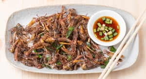 Are Consumers Open to Eating Insect Protein?