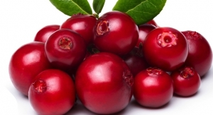 Cranberry Component New for Skin Care Formulations