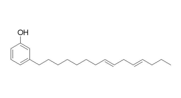 Figure 3: NX-2026 (3-pentadeca-dienyl-phenol) chemical structure.