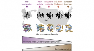 The Effect of Migration on Microbiome & Obesity