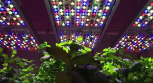 Osram Unveils Grow Light System for Horticulture Research