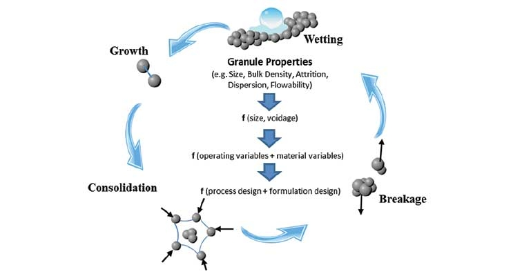 Figure 2: Mechanisms of wet granulation (Courtesy AbbVie)