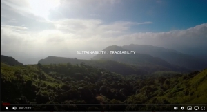 Sustainability and Traceability