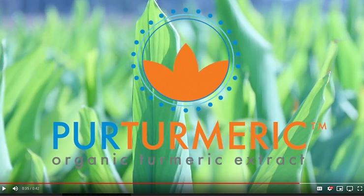 Turmeric Mother