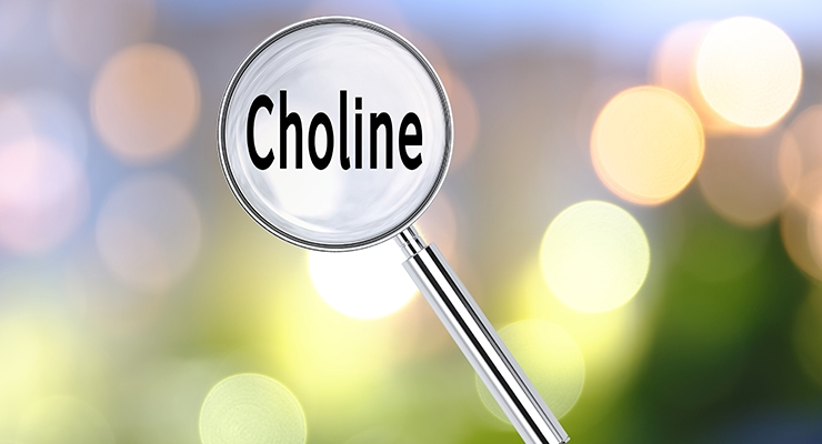 Choline: The Essential Nutrient Americans Still Aren't Consuming Enough