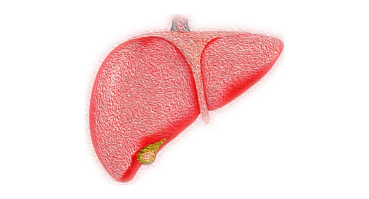 Early Screening Technology Helps Reduce Risk of Liver Disease