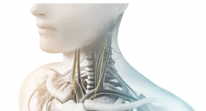 Research Supports Key Areas of Clinical Development for electroCore