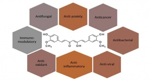 Curcumin: Beyond Anti-Inflammation & Anti-Oxidation