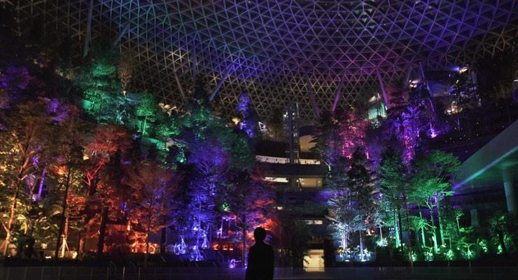 Shiseido Opens 'Senses-Driven' Installation at Singapore's Jewel Changi Airport