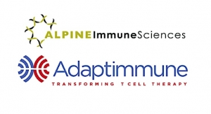 Adaptimmune, Alpine Immune Sciences Enter Next-Gen SPEAR T-Cell Pact