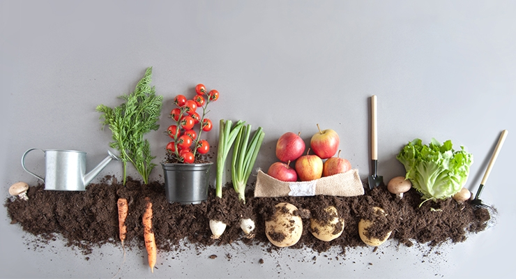 U.S. Organic Sales Top $50 Billion in 2018
