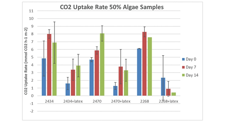 Figure 3.  CO2 uptake rates tested over a 2 week period for algae cells alone and 50/50 algae cells:latex resin wet coating.