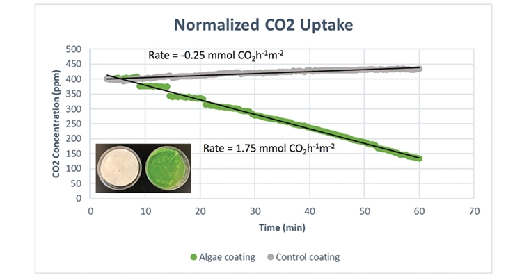 Figure 8.  CO2 uptake measured for (gray) a coating without algae cells, and (green) a coating containing the algae cells. Inset picture shows the plastic dishes coated without algae cells (white) and with 2.5% algae cells (green).