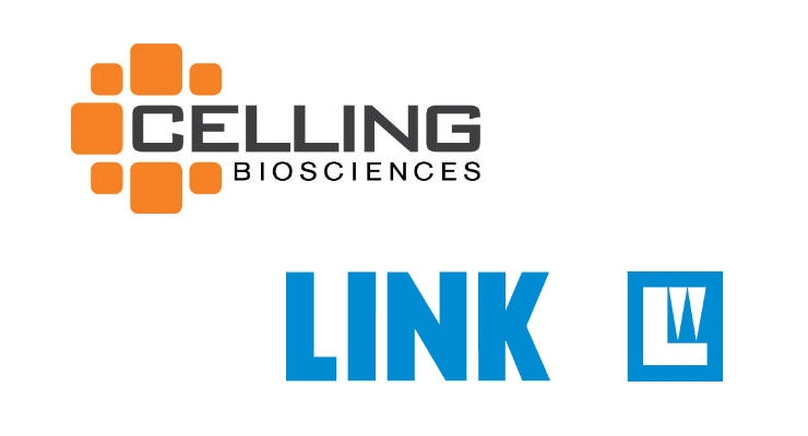 Celling Spine Buys Link Spine