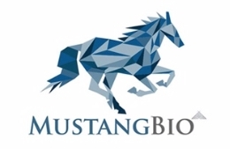 Mustang Bio's AML Treatment Receives Orphan Drug Designation