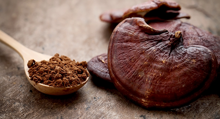 ConsumerLab Evaluates Reishi Mushroom Supplements