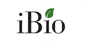 iBio, AzarGen Biotechnologies Expand Mfg. Pact