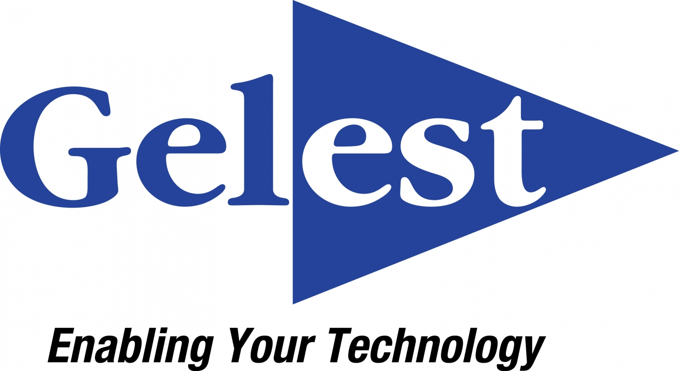 Gelest Appoints New VP and GM