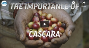 The Importance of Cascara Coffee Fruit