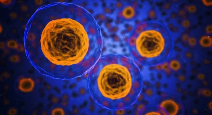 3P Bio, In3Bio Enter Cancer Pact
