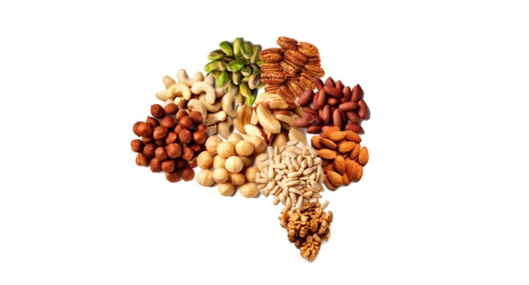 High Intake of Nuts May Help Protect Older Adults from Cognitive Decline