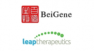 Leap, BeiGene Ink Exclusive Antibody Alliance