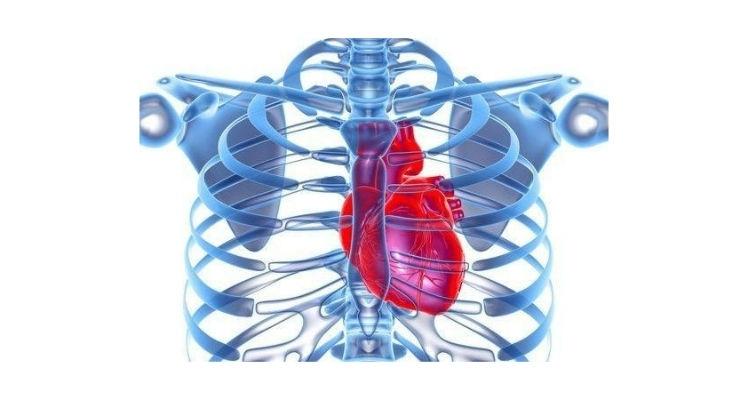 AI-Driven Blood Test Designed to Diagnose Heart Disease