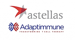 Astellas, Adaptimmune Enter CAR-T Alliance